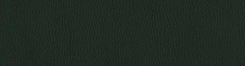 Tejido en color Verde